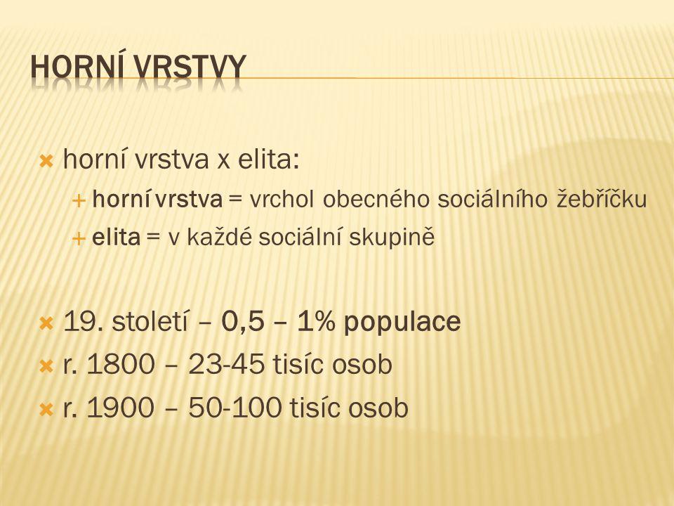  horní vrstva x elita:  horní vrstva = vrchol obecného sociálního žebříčku  elita = v každé sociální skupině  19.