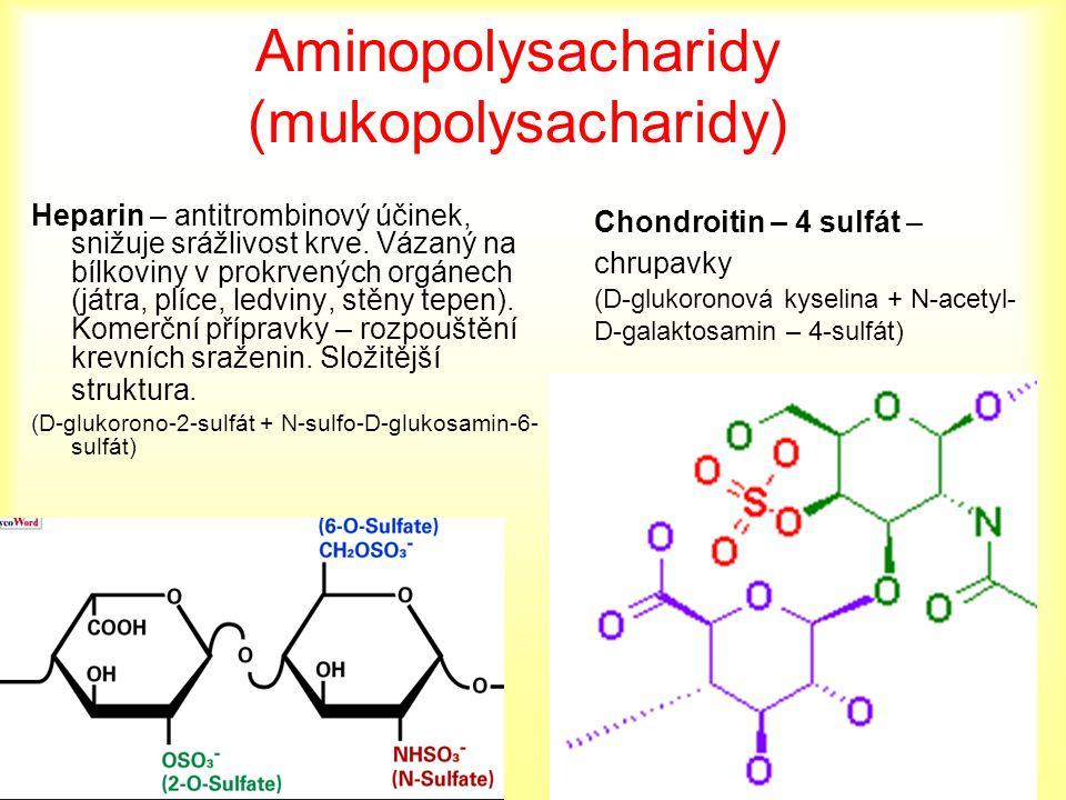 Aminopolysacharidy (mukopolysacharidy) Heparin – antitrombinový účinek, snižuje srážlivost krve. Vázaný na bílkoviny v prokrvených orgánech (játra, pl