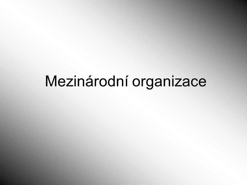 Mezinárodní organizace