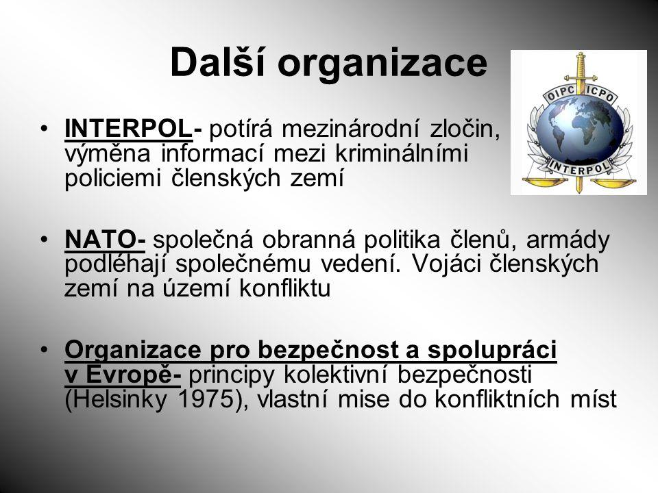 Další organizace INTERPOL- potírá mezinárodní zločin, výměna informací mezi kriminálními policiemi členských zemí NATO- společná obranná politika člen