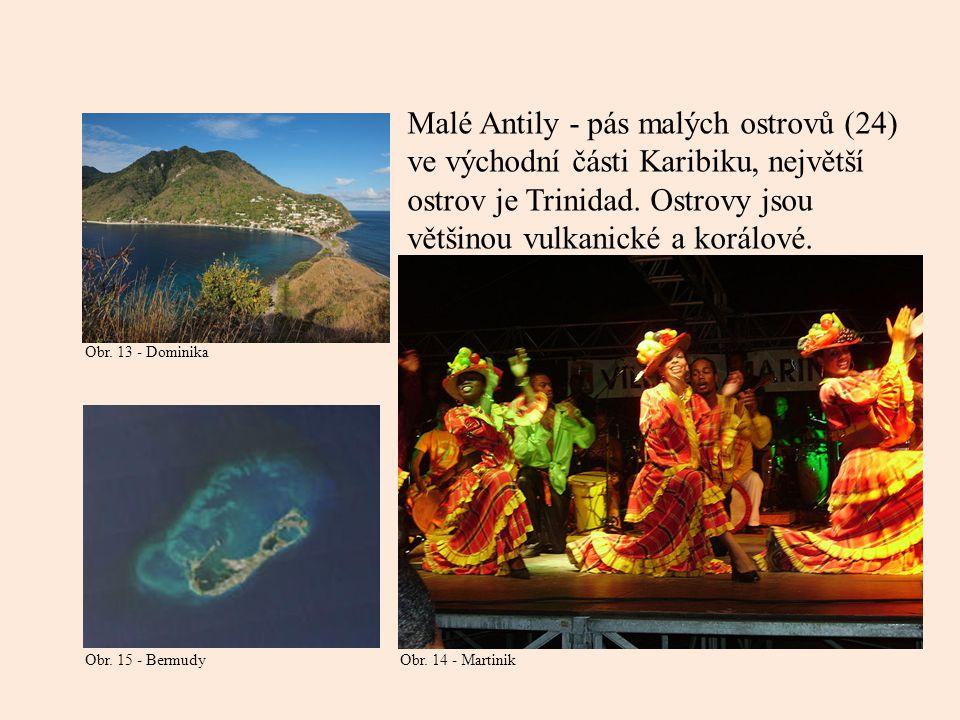Malé Antily - pás malých ostrovů (24) ve východní části Karibiku, největší ostrov je Trinidad. Ostrovy jsou většinou vulkanické a korálové. Obr. 13 -