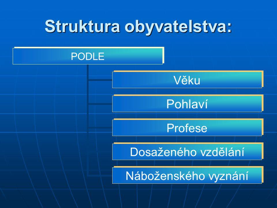 Struktura obyvatelstva: PODLE Věku Pohlaví Profese Dosaženého vzdělání Náboženského vyznání