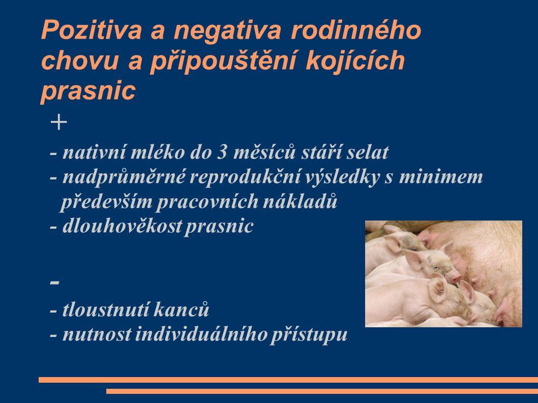 Pozitiva a negativa rodinného chovu a připouštění kojících prasnic + - nativní mléko do 3 měsíců stáří selat - nadprůměrné reprodukční výsledky s minimem především pracovních nákladů - dlouhověkost prasnic - - tloustnutí kanců - nutnost individuálního přístupu