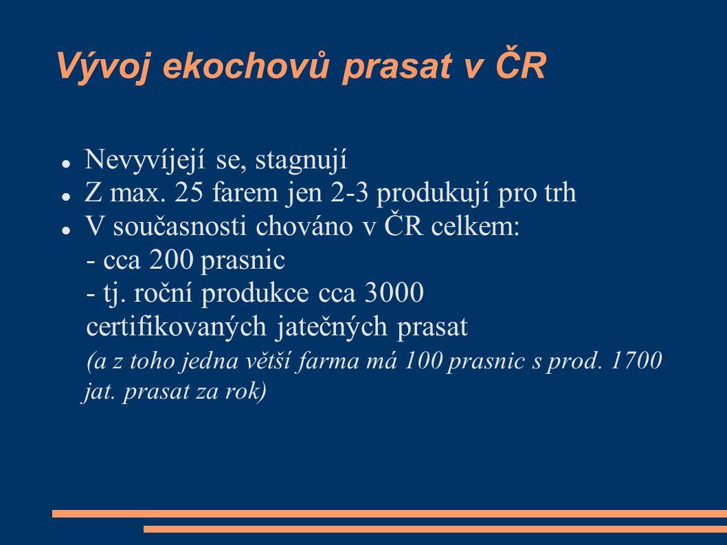 Vývoj ekochovů prasat v ČR Nevyvíjejí se, stagnují Z max.