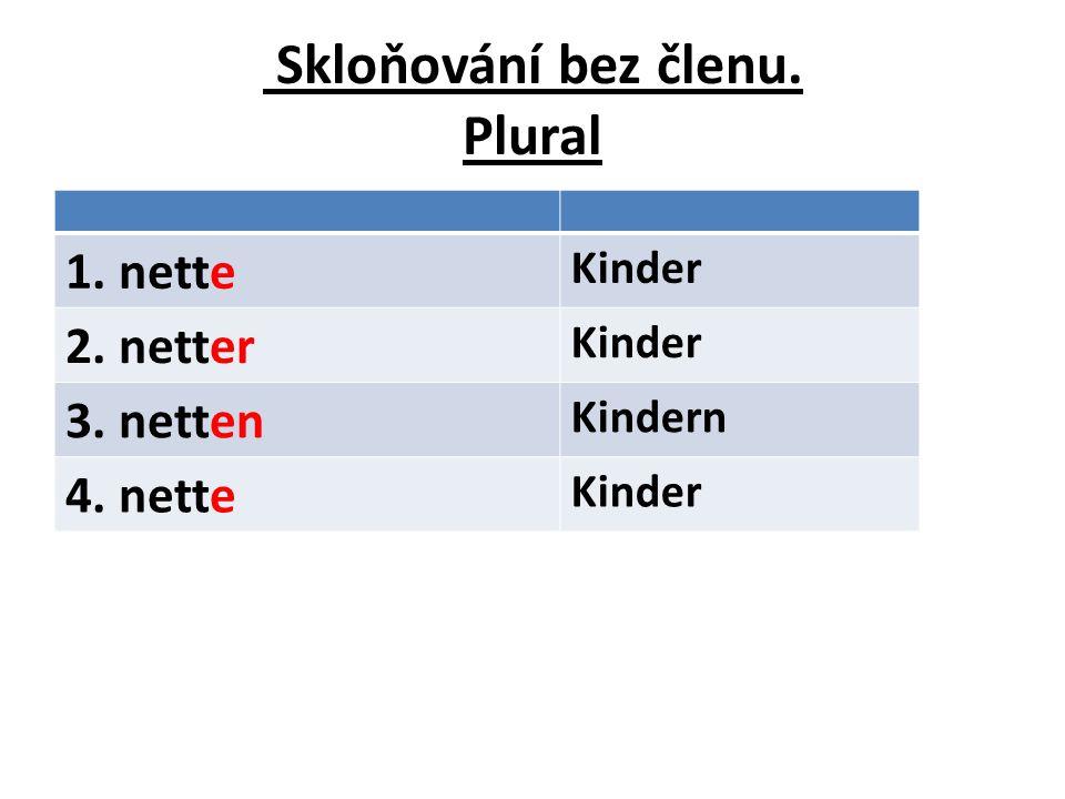 Skloňování bez členu. Plural 1. nette Kinder 2. netter Kinder 3. netten Kindern 4. nette Kinder