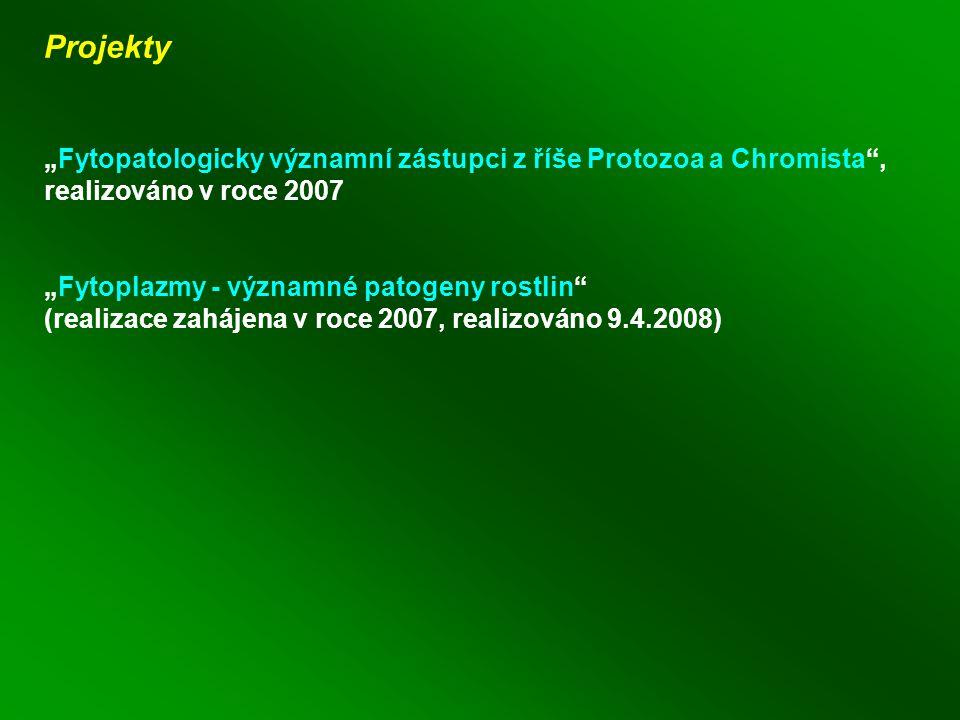 """Projekty """"Fytopatologicky významní zástupci z říše Protozoa a Chromista , realizováno v roce 2007 """"Fytoplazmy - významné patogeny rostlin (realizace zahájena v roce 2007, realizováno 9.4.2008)"""