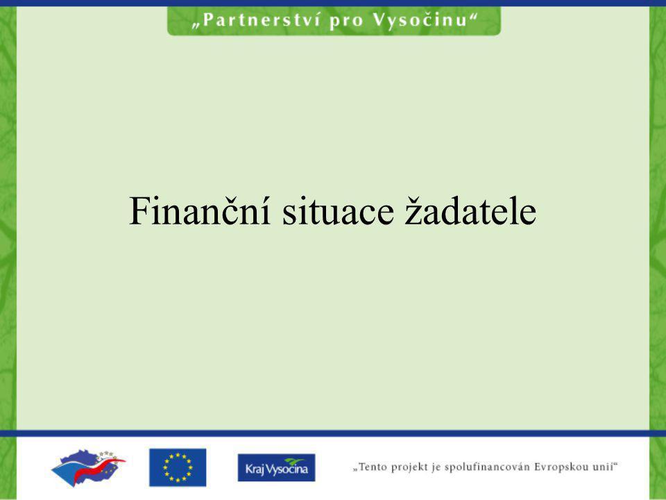 Finanční situace žadatele