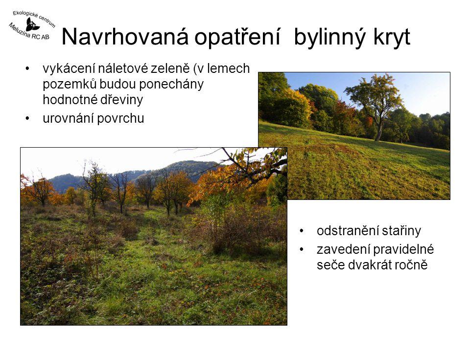 Navrhovaná opatření bylinný kryt vykácení náletové zeleně (v lemech pozemků budou ponechány hodnotné dřeviny urovnání povrchu odstranění stařiny zavedení pravidelné seče dvakrát ročně