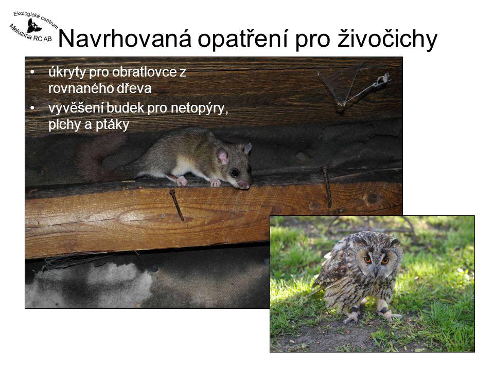 Navrhovaná opatření pro živočichy úkryty pro obratlovce z rovnaného dřeva vyvěšení budek pro netopýry, plchy a ptáky