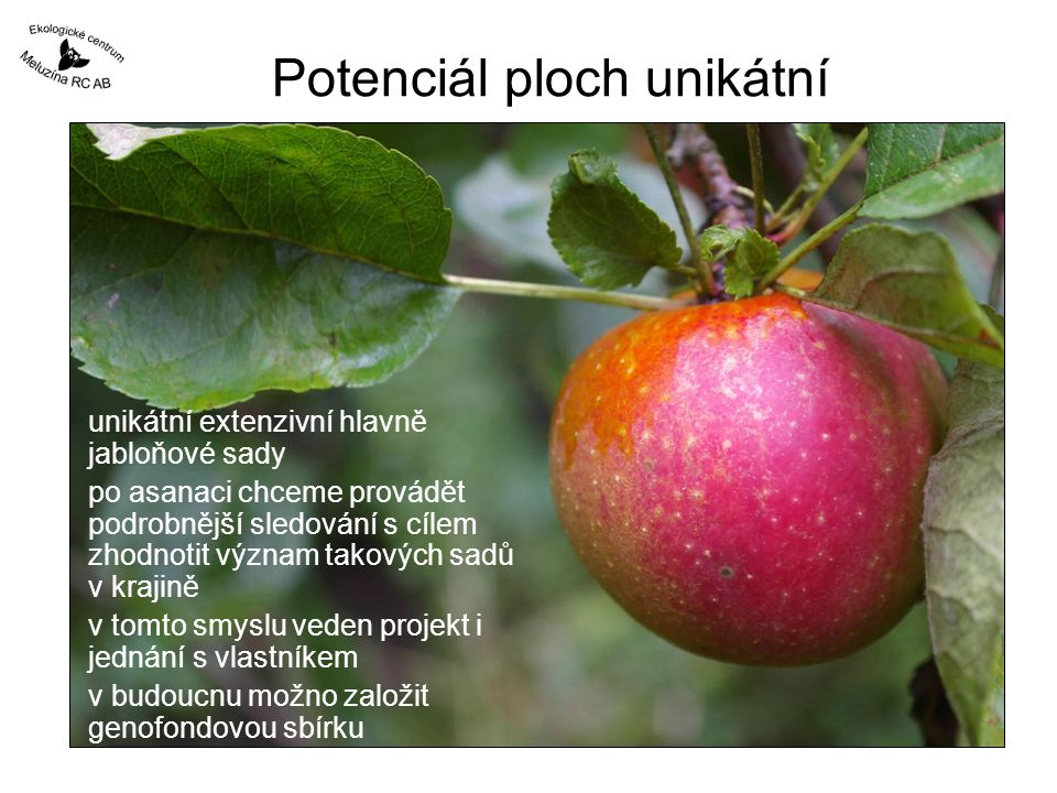 Potenciál ploch unikátní unikátní extenzivní hlavně jabloňové sady po asanaci chceme provádět podrobnější sledování s cílem zhodnotit význam takových sadů v krajině v tomto smyslu veden projekt i jednání s vlastníkem v budoucnu možno založit genofondovou sbírku