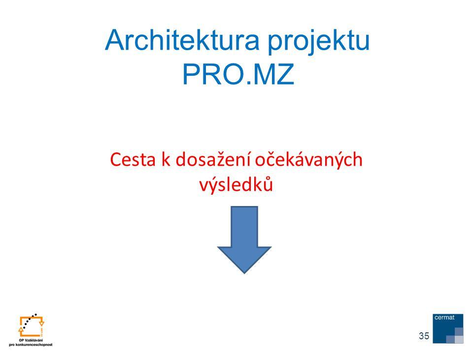 Architektura projektu PRO.MZ Cesta k dosažení očekávaných výsledků 35