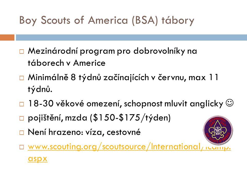 Boy Scouts of America (BSA) tábory  Mezinárodní program pro dobrovolníky na táborech v Americe  Minimálně 8 týdnů začínajících v červnu, max 11 týdn