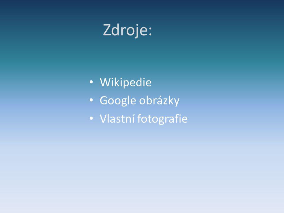 Zdroje: Wikipedie Google obrázky Vlastní fotografie
