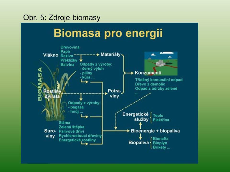 Obr. 5: Zdroje biomasy