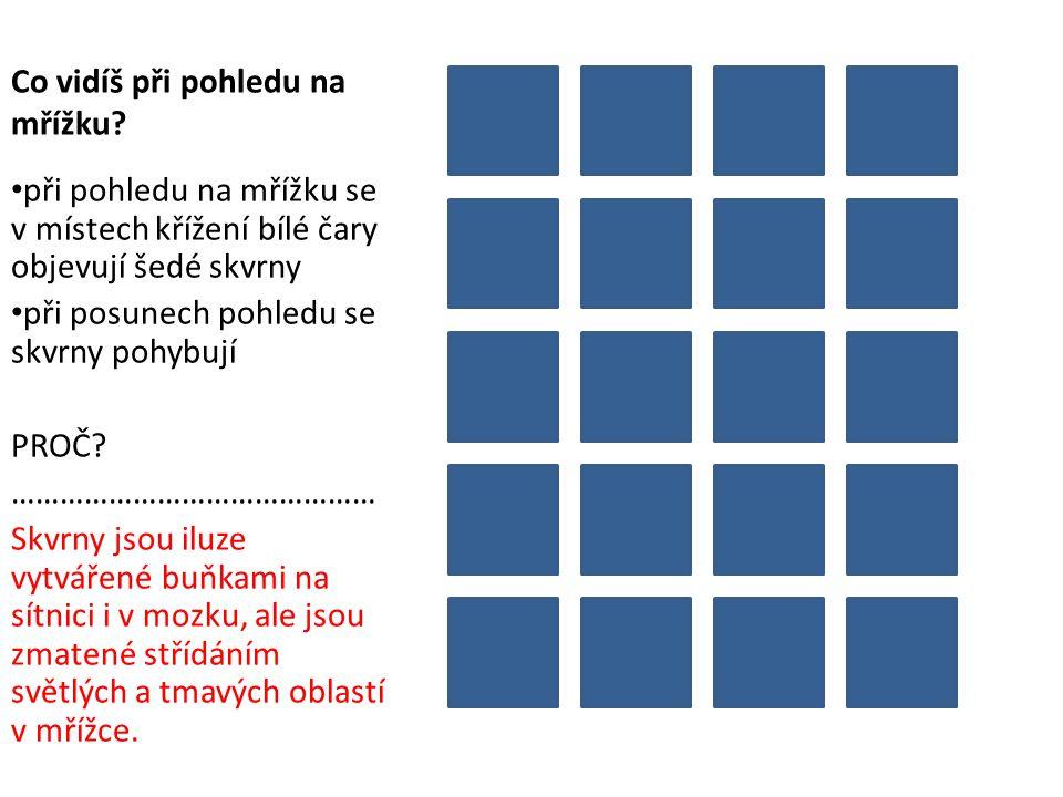 Co vidíš při pohledu na mřížku? při pohledu na mřížku se v místech křížení bílé čary objevují šedé skvrny při posunech pohledu se skvrny pohybují PROČ