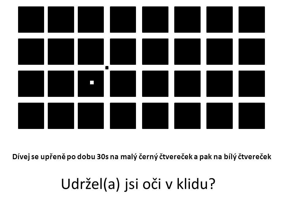 Dívej se upřeně po dobu 30s na malý černý čtvereček a pak na bílý čtvereček Udržel(a) jsi oči v klidu?