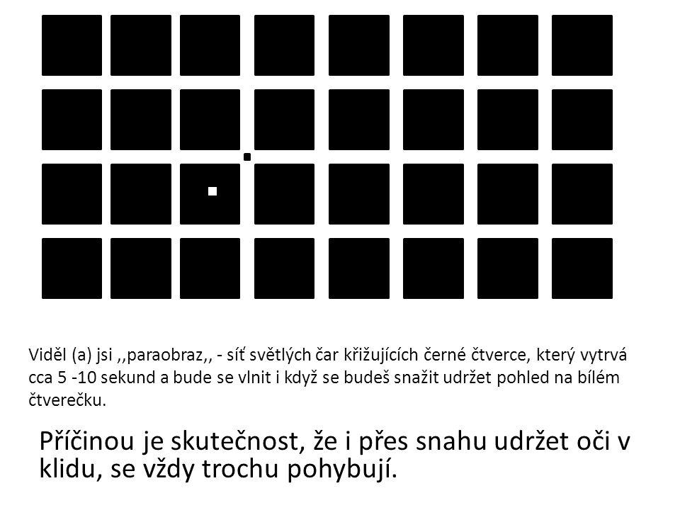 Viděl (a) jsi,,paraobraz,, - síť světlých čar křižujících černé čtverce, který vytrvá cca 5 -10 sekund a bude se vlnit i když se budeš snažit udržet p