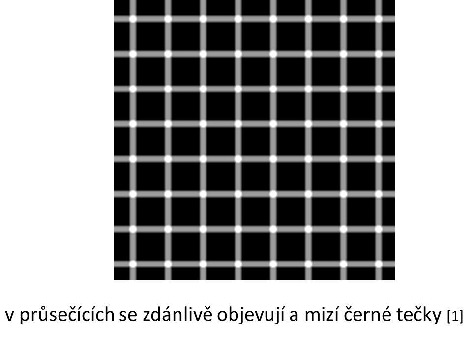 v průsečících se zdánlivě objevují a mizí černé tečky [1]