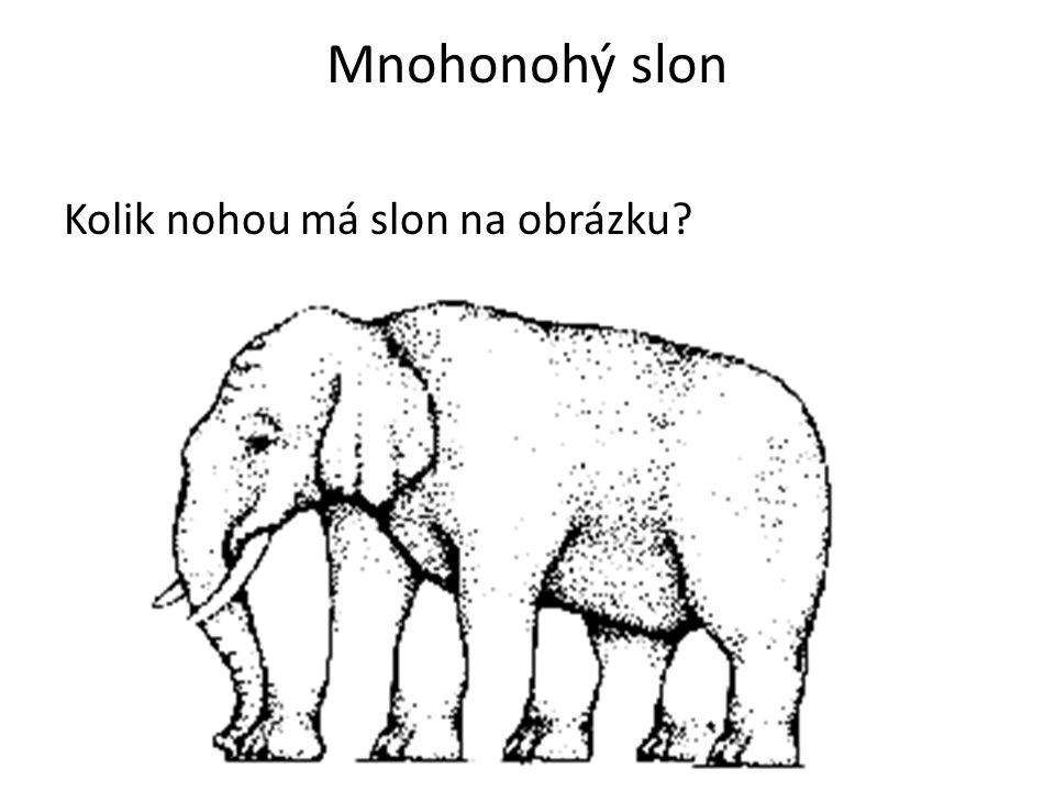 Mnohonohý slon Kolik nohou má slon na obrázku?