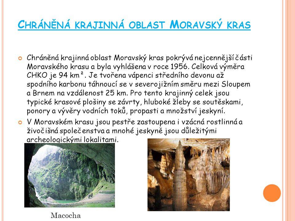 C HRÁNĚNÁ KRAJINNÁ OBLAST B ÍLÉ K ARPATY Chráněná krajinná oblast Bílé Karpaty byla zřízena 3.