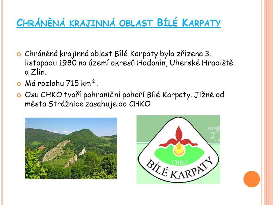 C HRÁNĚNÁ KRAJINNÁ OBLAST B LANÍK Chráněná krajinná oblast Blaník (CHKO Blaník) byla vyhlášena 29.