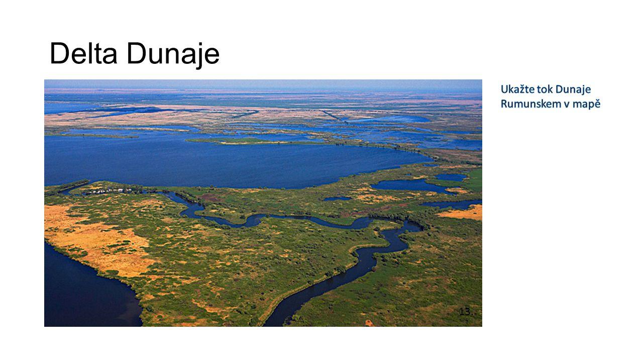 Delta Dunaje 13.