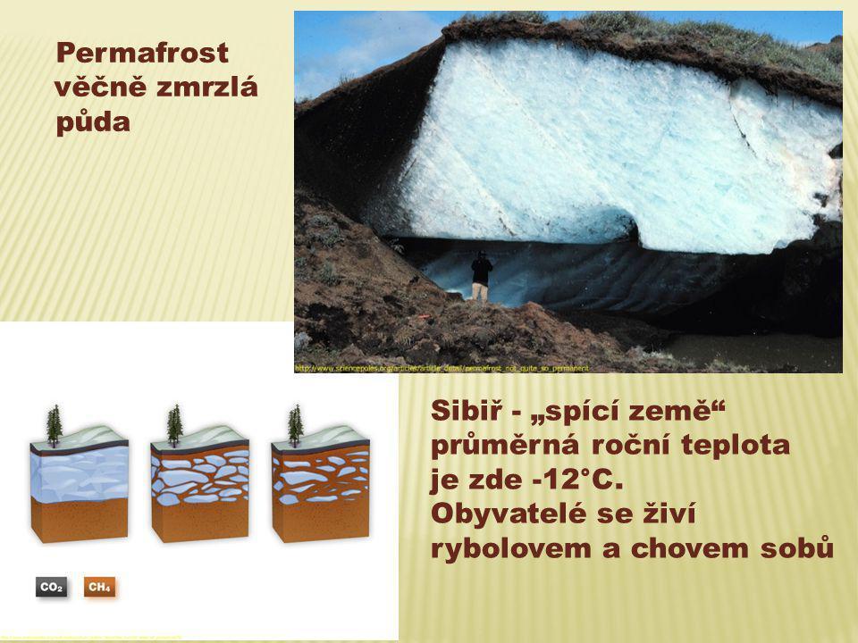 """Permafrost věčně zmrzlá půda Sibiř - """"spící země"""" průměrná roční teplota je zde -12°C. Obyvatelé se živí rybolovem a chovem sobů"""