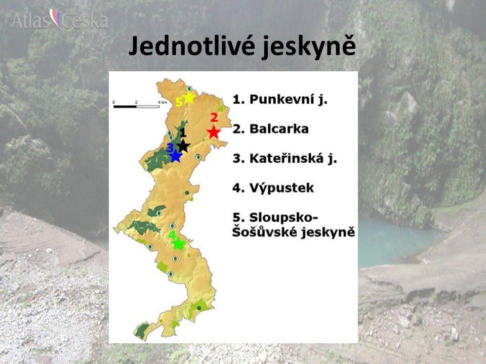 Punkevní jeskyně v severní části Moravského krasu nejznámější jeskyně z celého Moravského krasu průzkum zahájen roku 1723 jméno podle řeky Punkvy, která jeskyni vyhloubila spojena s propastí Macocha velká část jeskyně je pod vodou