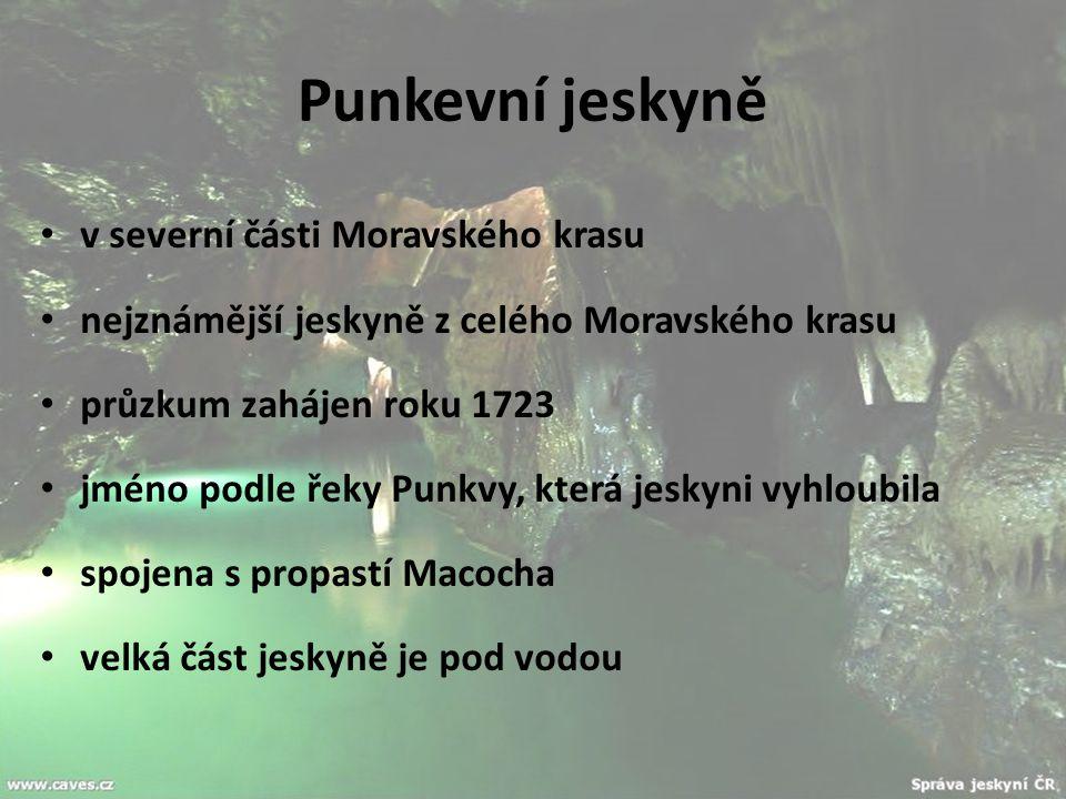 Punkevní jeskyně v severní části Moravského krasu nejznámější jeskyně z celého Moravského krasu průzkum zahájen roku 1723 jméno podle řeky Punkvy, kte
