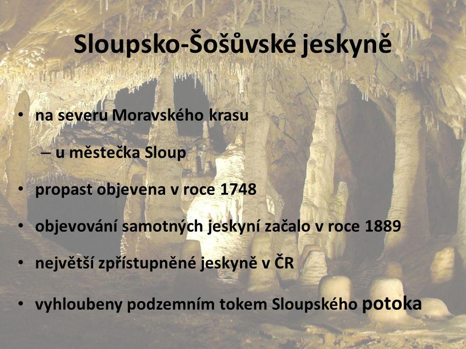 Sloupsko-Šošůvské jeskyně na severu Moravského krasu – u městečka Sloup propast objevena v roce 1748 objevování samotných jeskyní začalo v roce 1889 n