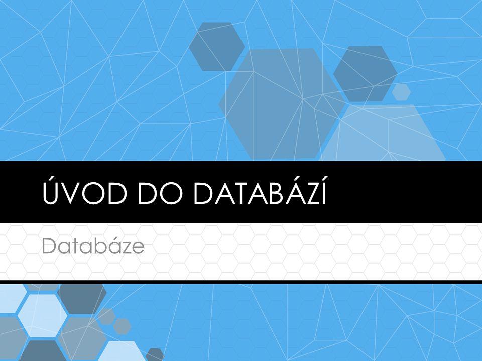 FLAT FILE  Uložení dat do souboru bez informací o struktuře dat  Organizaci dat zajišťuje samotná aplikace  Historický.