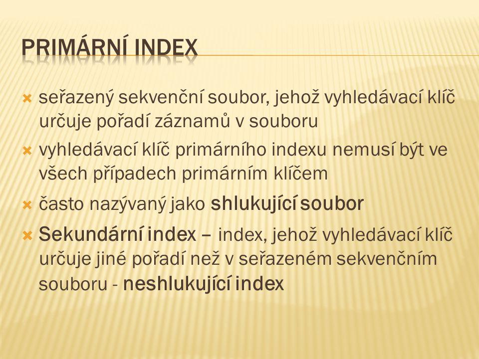  seřazený sekvenční soubor, jehož vyhledávací klíč určuje pořadí záznamů v souboru  vyhledávací klíč primárního indexu nemusí být ve všech případech primárním klíčem  často nazývaný jako shlukující soubor  Sekundární index – index, jehož vyhledávací klíč určuje jiné pořadí než v seřazeném sekvenčním souboru - neshlukující index