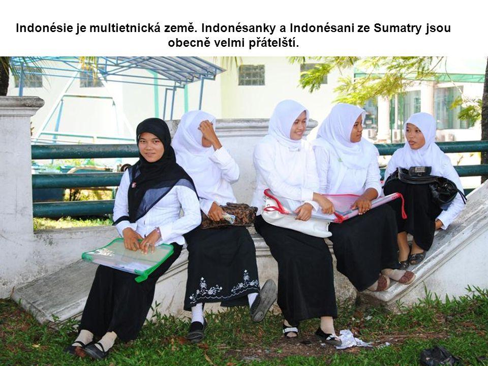 Indonésie je multietnická země. Indonésanky a Indonésani ze Sumatry jsou obecně velmi přátelští.