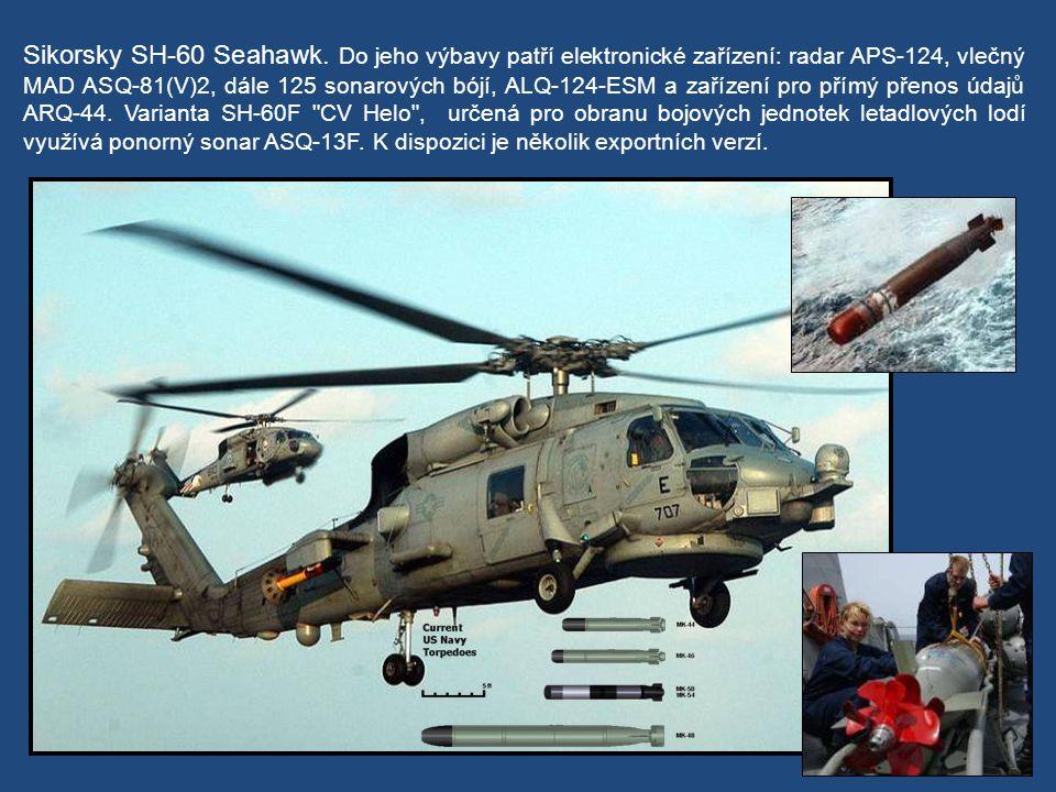 Loď pojme též dvojici vrtulníků SeaHawk.
