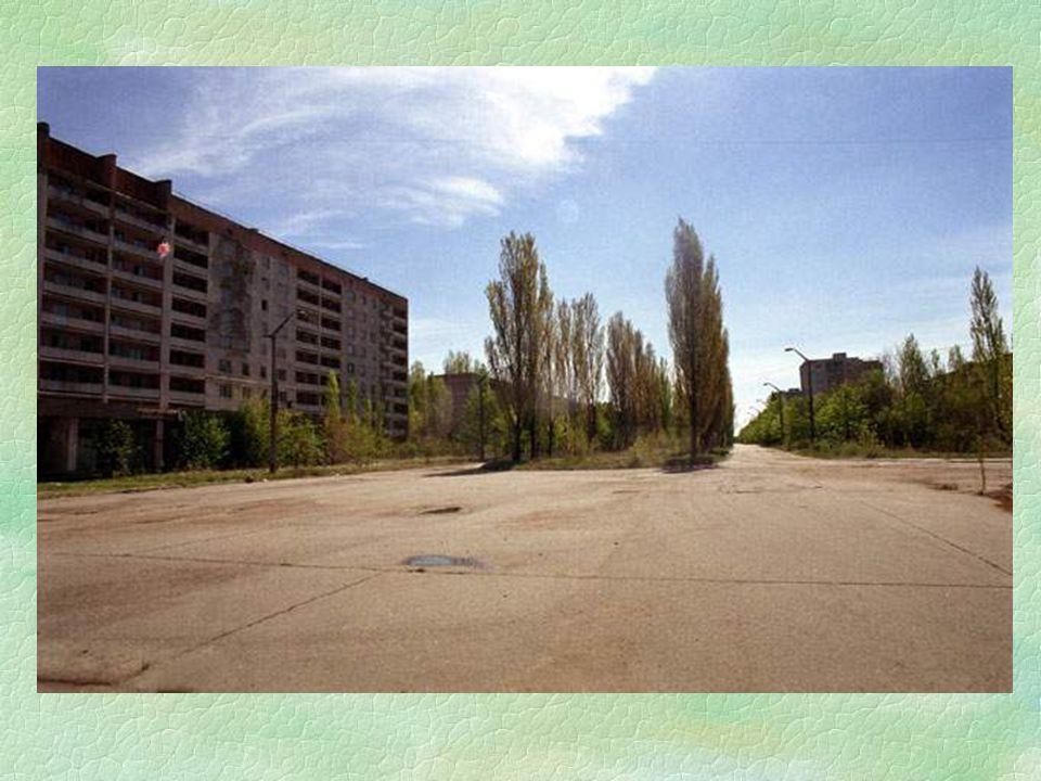 §Jak již vím, na asfaltce není téměř žádná radiace, ale jakmile se od ní vzdálíte jen deset metrů, nebude vám stačit stupnice dozimetru. Kdybych ušla