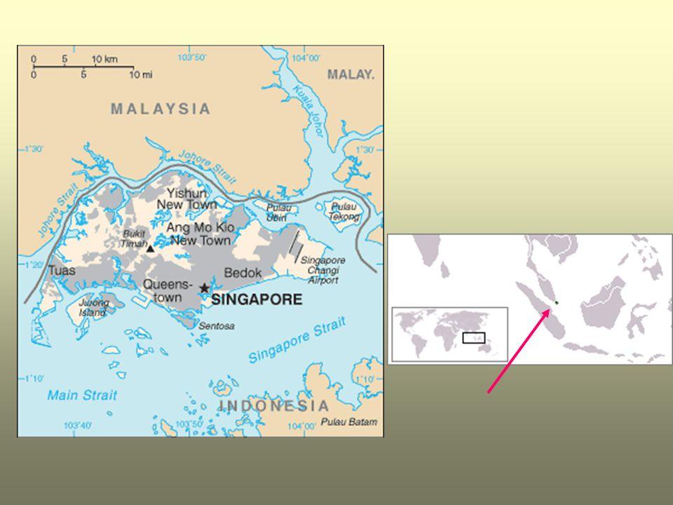 Singapur je městský stát v jihovýchodní Asii na stejnojmenném ostrově a přilehlých ostrůvcích při jižní výspě Malajského poloostrova. Patří mezi nejvy