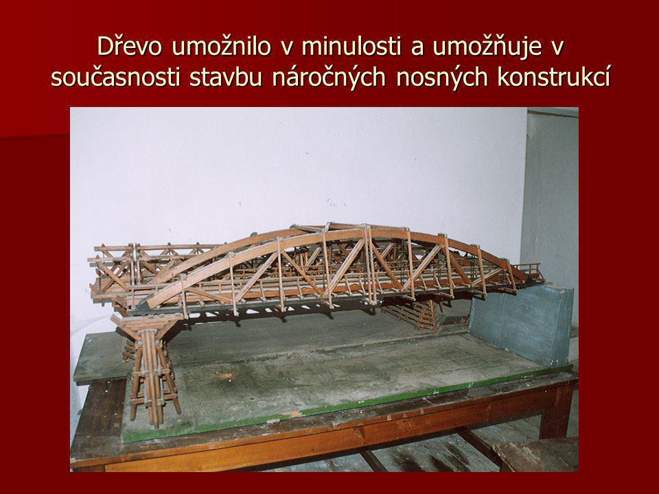 Dřevo umožnilo v minulosti a umožňuje v současnosti stavbu náročných nosných konstrukcí