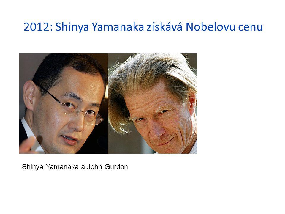 2012: Shinya Yamanaka získává Nobelovu cenu Shinya Yamanaka a John Gurdon