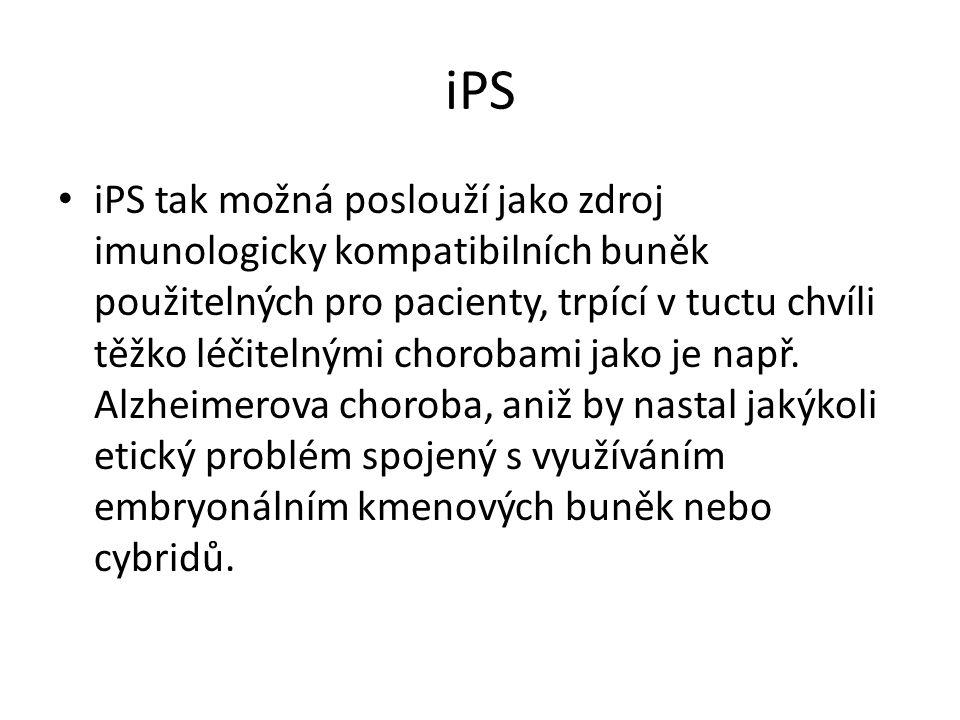 iPS iPS tak možná poslouží jako zdroj imunologicky kompatibilních buněk použitelných pro pacienty, trpící v tuctu chvíli těžko léčitelnými chorobami j