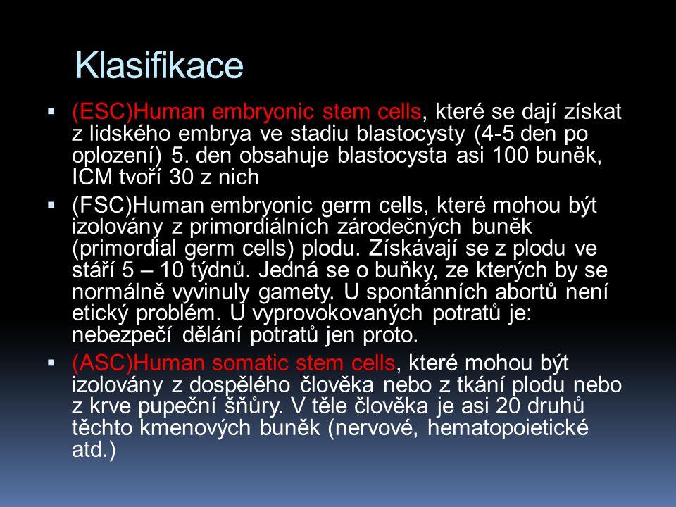 Klasifikace  (ESC)Human embryonic stem cells, které se dají získat z lidského embrya ve stadiu blastocysty (4-5 den po oplození) 5. den obsahuje blas