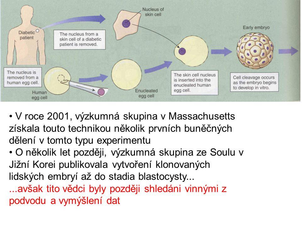 V roce 2001, výzkumná skupina v Massachusetts získala touto technikou několik prvních buněčných dělení v tomto typu experimentu O několik let později,