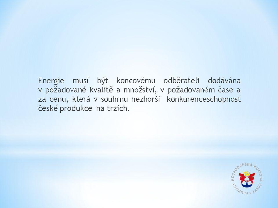 Energie musí být koncovému odběrateli dodávána v požadované kvalitě a množství, v požadovaném čase a za cenu, která v souhrnu nezhorší konkurenceschopnost české produkce na trzích.