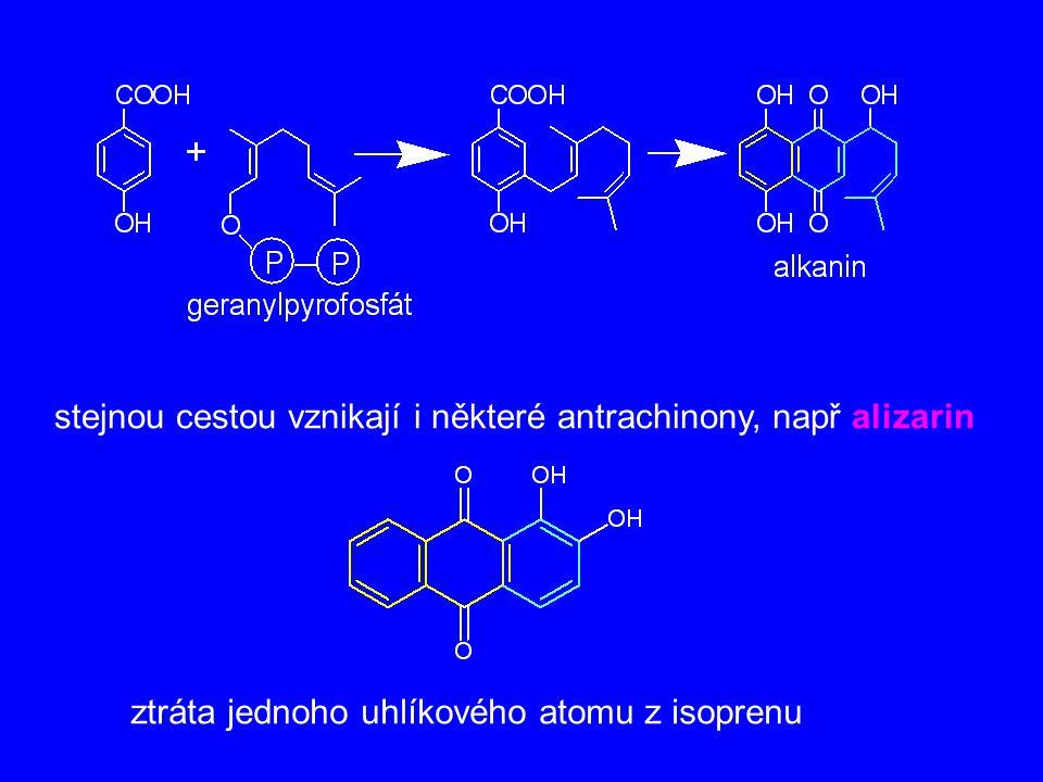 stejnou cestou vznikají i některé antrachinony, např alizarin ztráta jednoho uhlíkového atomu z isoprenu