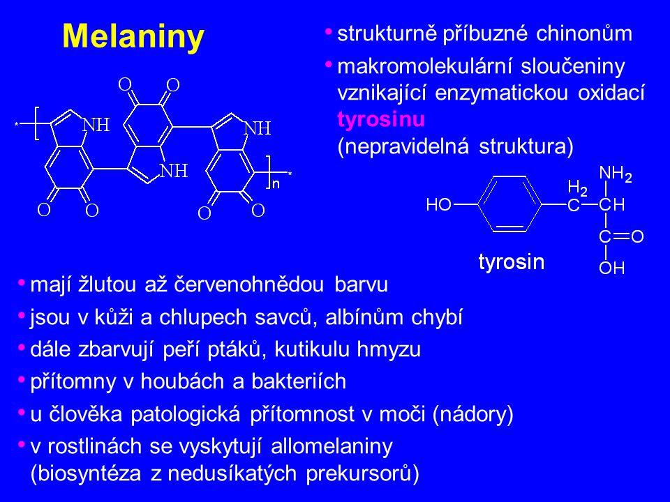 Melaniny strukturně příbuzné chinonům makromolekulární sloučeniny vznikající enzymatickou oxidací tyrosinu (nepravidelná struktura) mají žlutou až čer