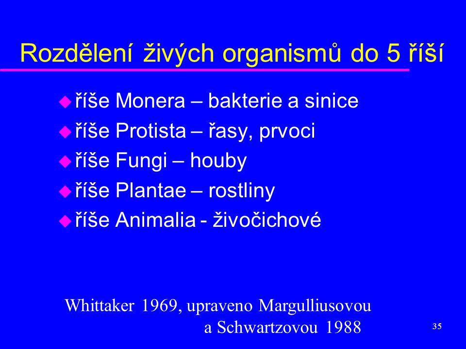 35 Rozdělení živých organismů do 5 říší u říše Monera – bakterie a sinice u říše Protista – řasy, prvoci u říše Fungi – houby u říše Plantae – rostlin