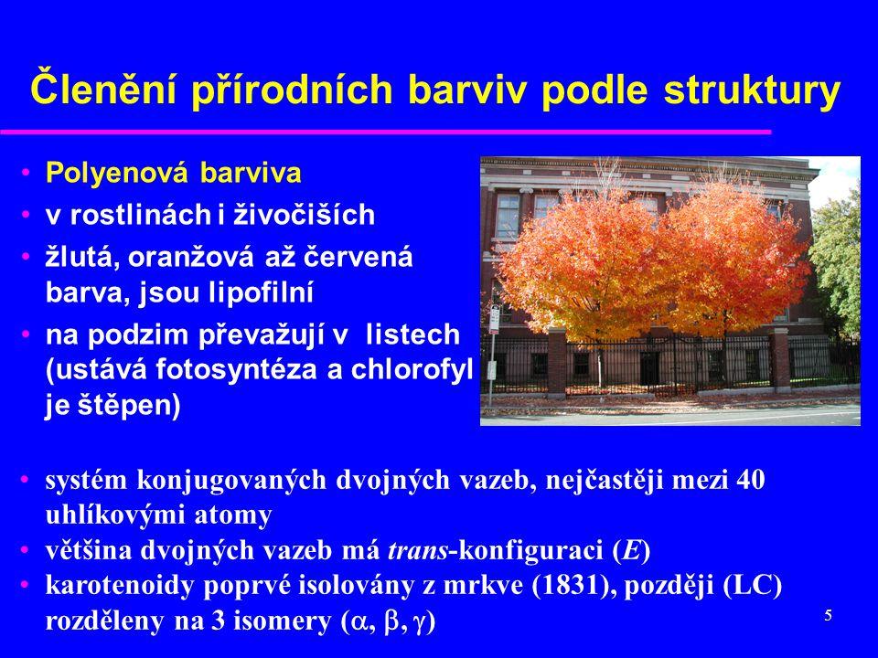 5 Členění přírodních barviv podle struktury Polyenová barviva v rostlinách i živočiších žlutá, oranžová až červená barva, jsou lipofilní na podzim pře