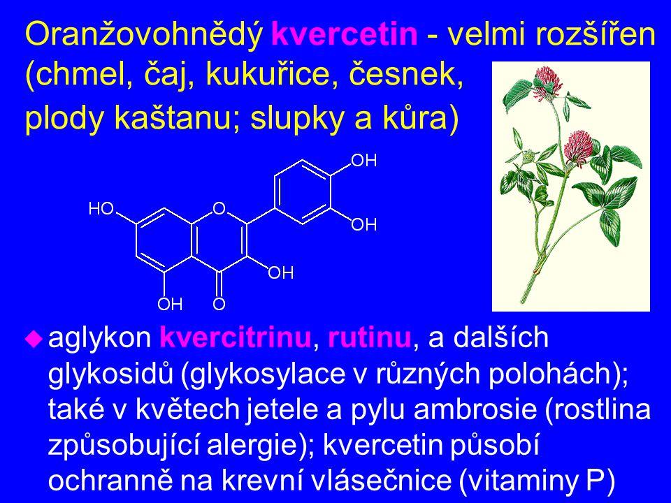 Oranžovohnědý kvercetin - velmi rozšířen (chmel, čaj, kukuřice, česnek, plody kaštanu; slupky a kůra) u aglykon kvercitrinu, rutinu, a dalších glykosi