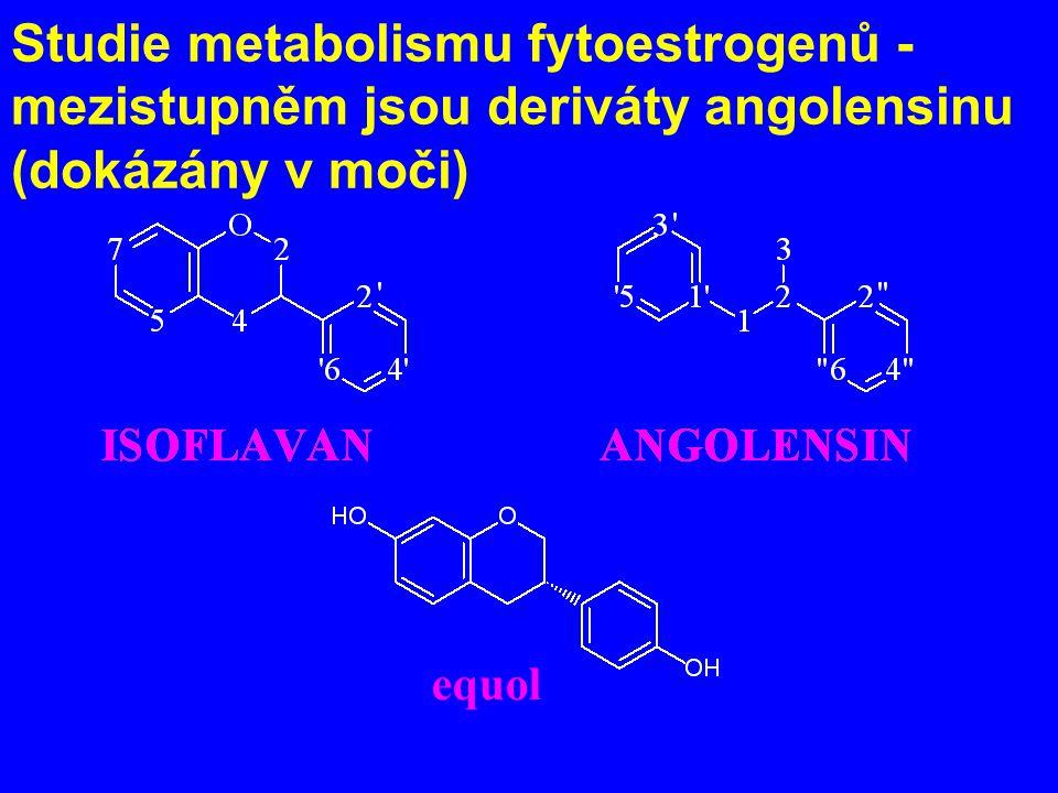 Studie metabolismu fytoestrogenů - mezistupněm jsou deriváty angolensinu (dokázány v moči) equol
