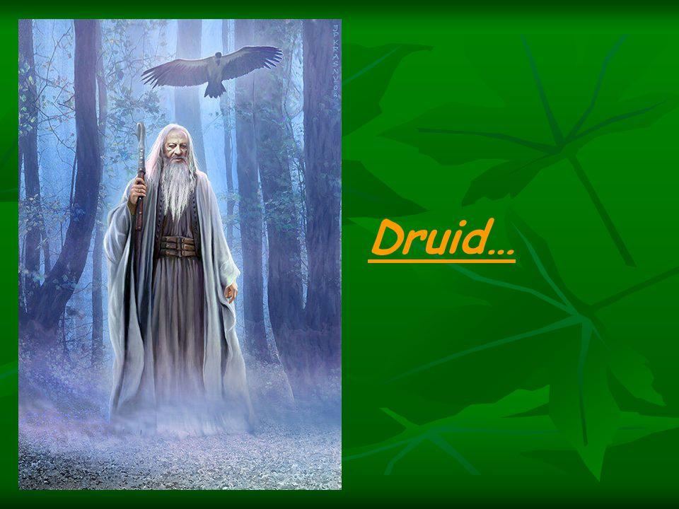 Druid…