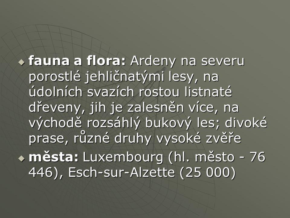  fauna a flora: Ardeny na severu porostlé jehličnatými lesy, na údolních svazích rostou listnaté dřeveny, jih je zalesněn více, na východě rozsáhlý bukový les; divoké prase, různé druhy vysoké zvěře  města: Luxembourg (hl.